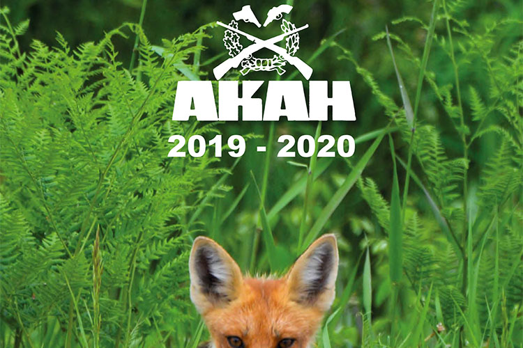 catalogo akah 2019-2020